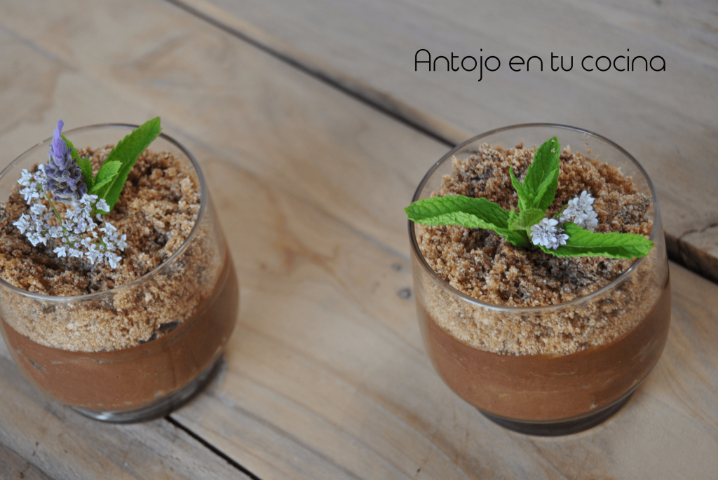 saludable mousse de chocolate y aguacate