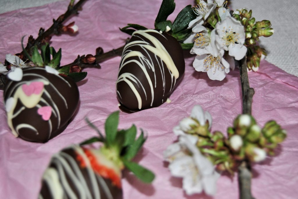 Fresas con chocolate perfectas
