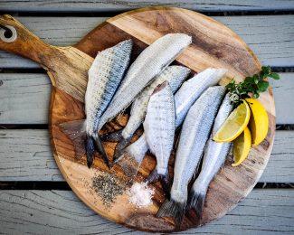 ¿Cómo conservar alimentos durante el mayor tiempo posible?